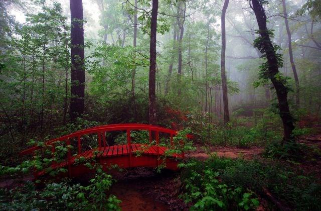 Alabama - Monte Sano Eyalet Parkı