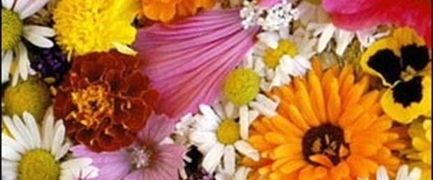 Çiçek kadınları etkiliyor