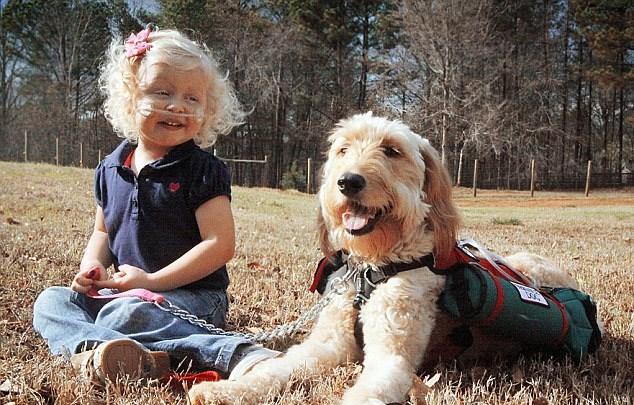 Çocuğun oksijeni köpeğin sırtında