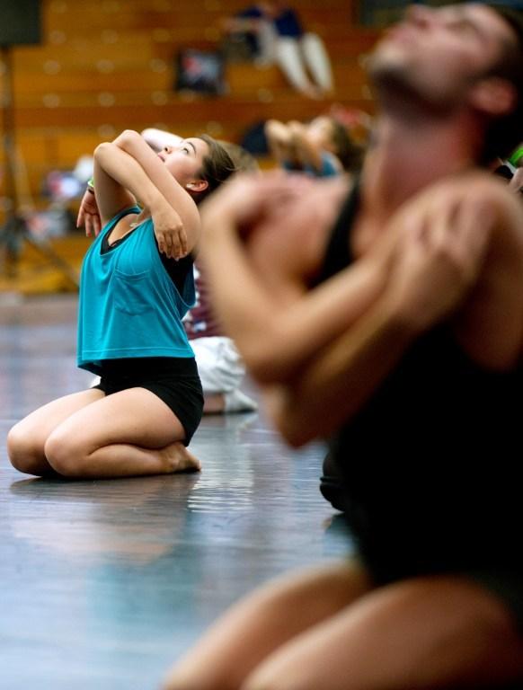 Dans tutkunları Fransa'da