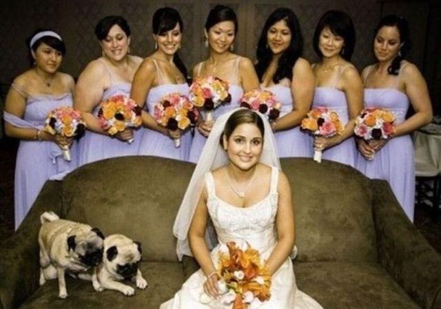 Düğünlerin davetsiz misafirleri