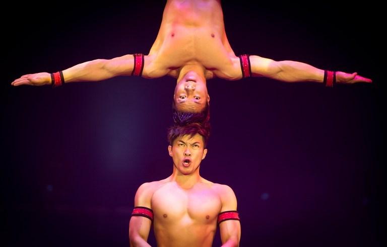 Dünyayı bir araya getiren sirk