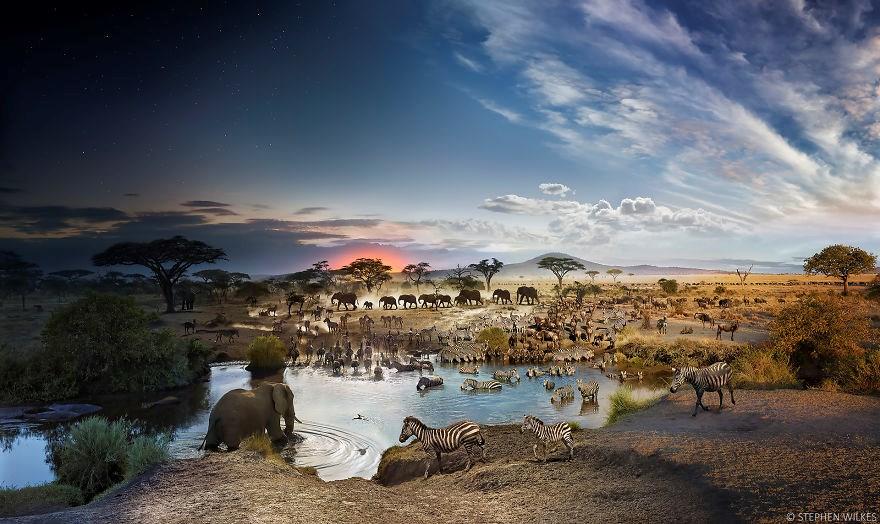 Serengeti Milli Parkı, Tanzanya