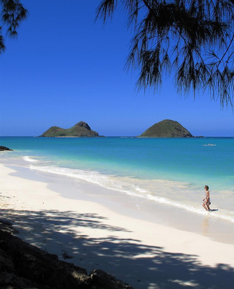 İşte meşhur Lost adası
