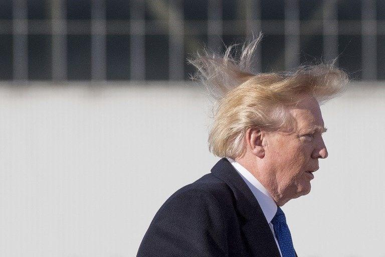 Trump saçları ile ilgili görsel sonucu