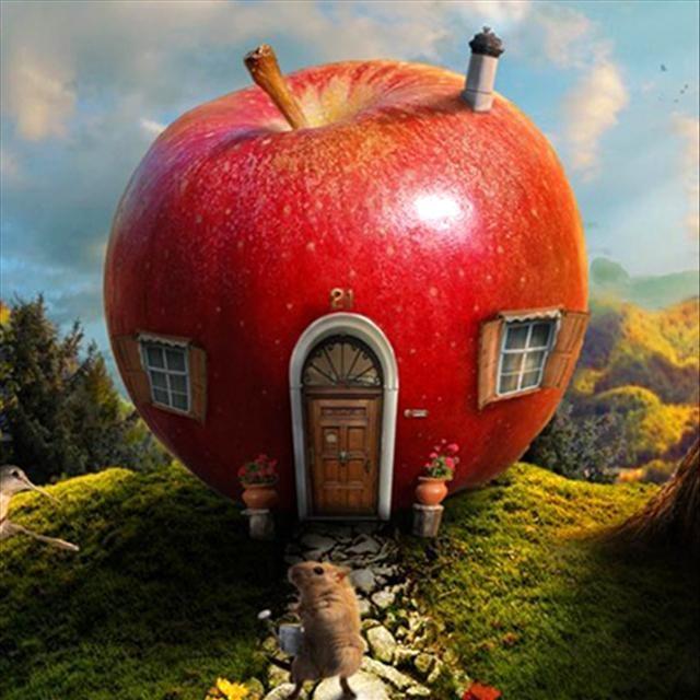 Meyve evler