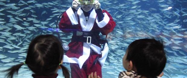 Noel Baba balıklarla dans etti