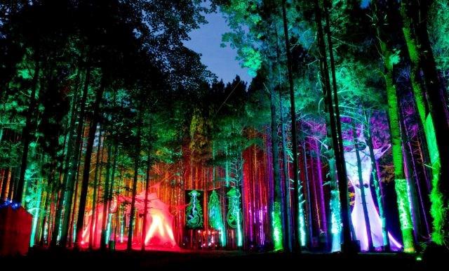 Elektrikli Ağaçlar Müzik Festivali - ABD