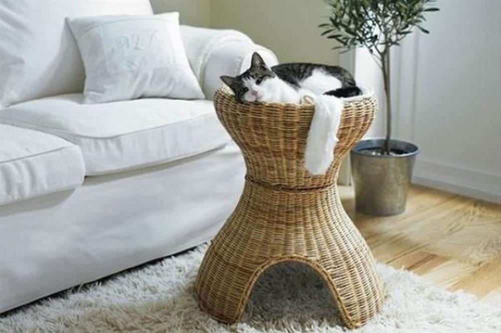 high back cat litter box