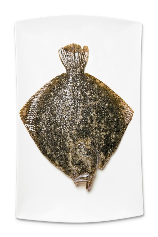 Tandırda Kütüm Balığı Videosu