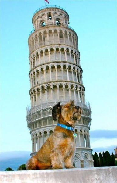 Pisa, İtalya