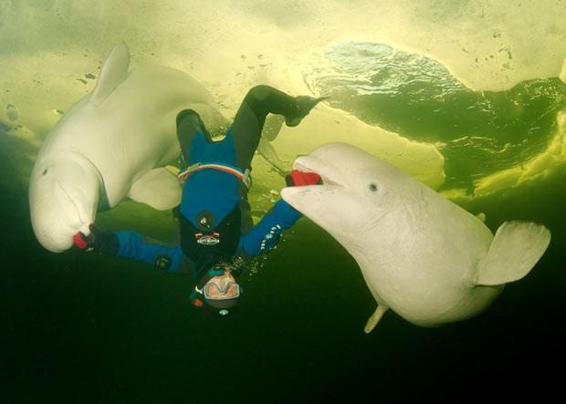 Su altı aşıklarının muhteşem fotoğrafları