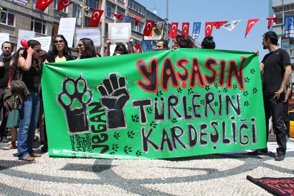 Türkiye'nin ilk vegan/vejetaryen yürüyüşü
