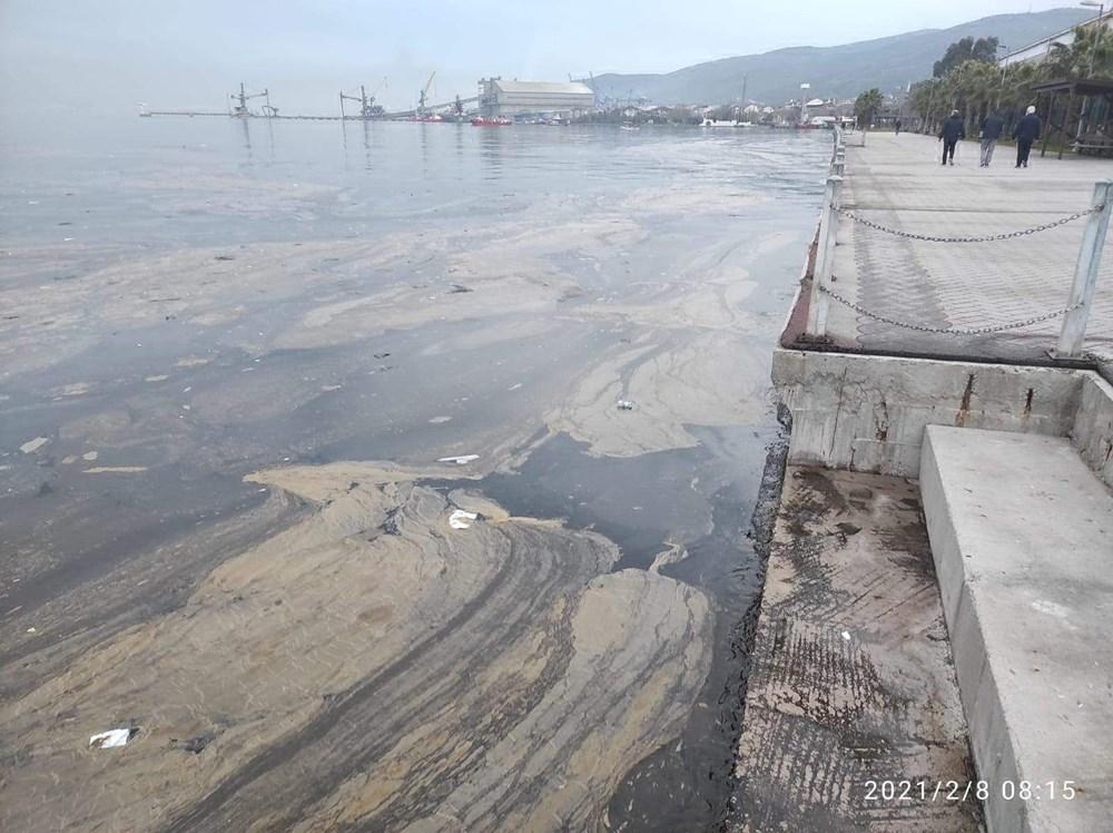 İzmit Körfezi'nde kimyasal kirlilik - 3