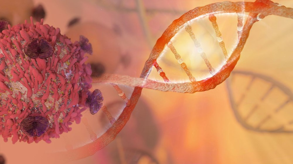 Covid-19'a karşı dünyanın ilk DNA aşısı geliştirildi: Gelecek ay kullanıma sunulması bekleniyor (DNA aşısı nedir?, DNA aşısının mRNA aşısından farkı nedir?) - 4
