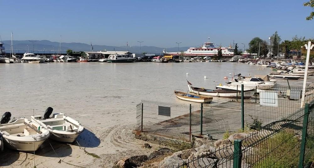 Deniz salyası ağları duman etti: Balıkçılık bitti - 3