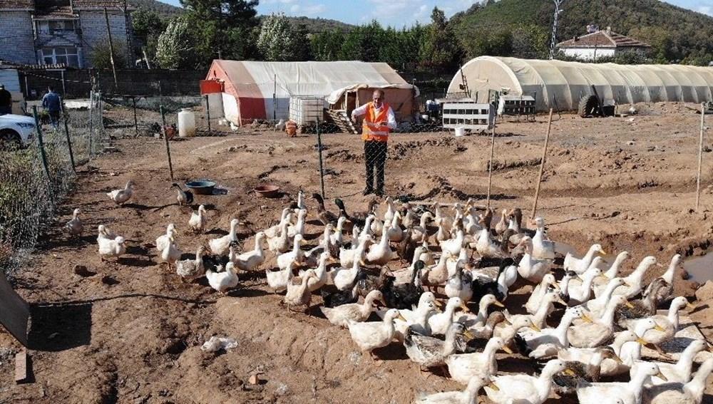 Tavuklara Neşet Ertaş dinletiyor - 2