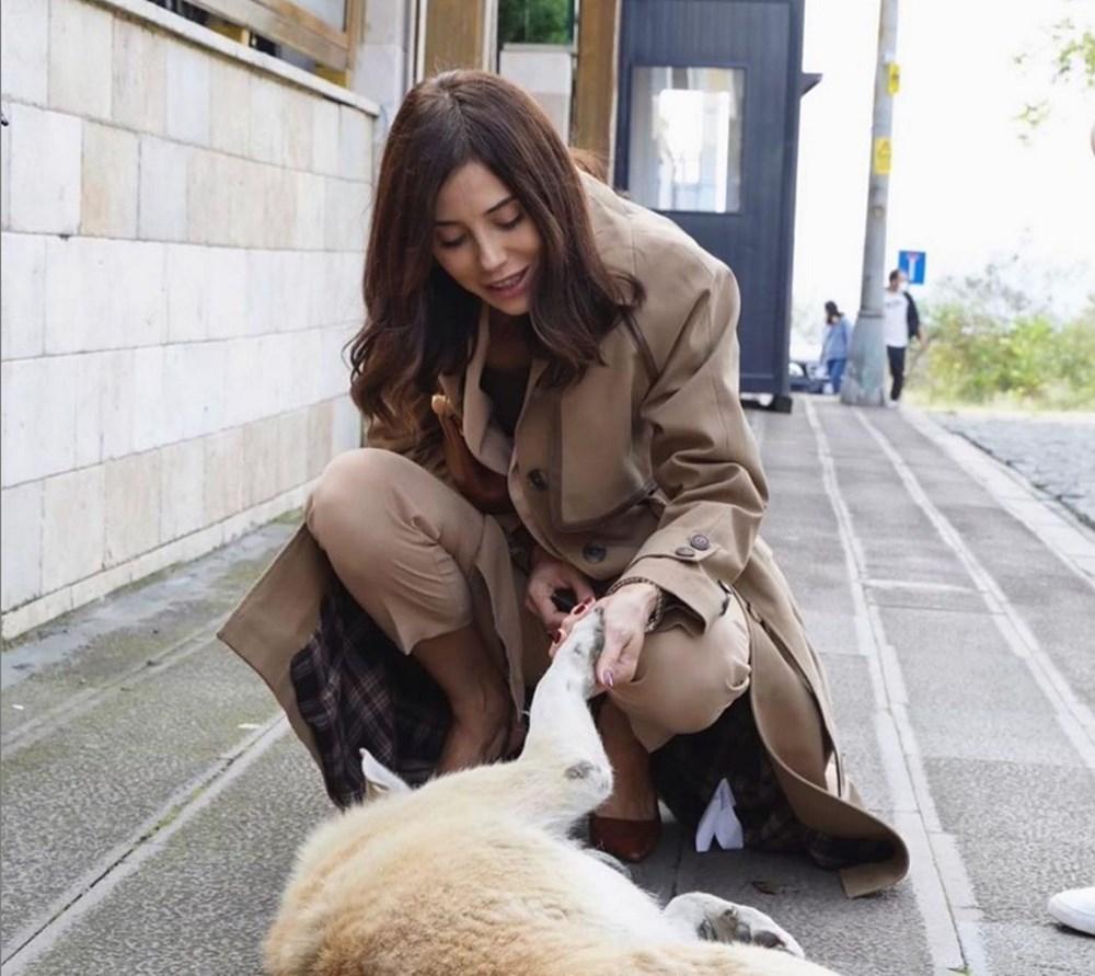 Cansu Dere'den hayvanlar için bağış - 3
