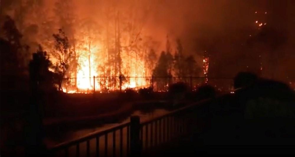 Avustralya Orman Yangınları