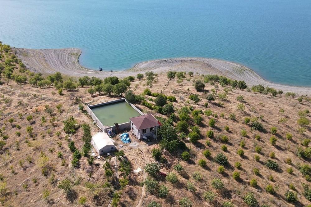 Doğaya kaçış hikayeleri: 'Robinson Ziya'nın Keban Baraj Gölü'ndeki adada huzurlu yaşamı - 4